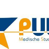 MSV Pulse logo
