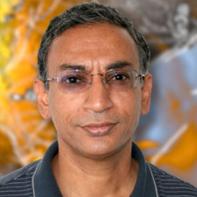 Amit Majumdar