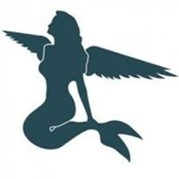Danish Business Angels logo