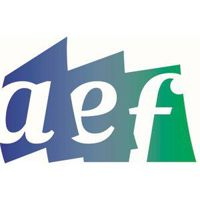 ANA Educational F... logo