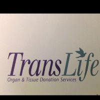 TransLife logo