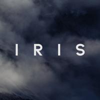 Iris Automation logo
