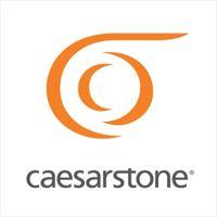 Caesarstone Int. logo
