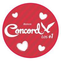 Colchas Mexico S.A. De C.V. logo