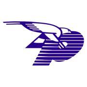 Pañalon, S.A. logo