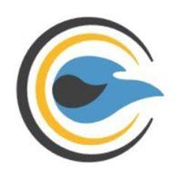 BRUHAT Insights Global logo