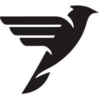 Black Swift Group logo