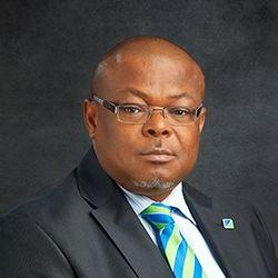 Profile photo of Alex C. Ojukwu, Non-Executive Director at Fidelity Bank