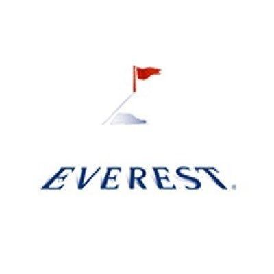 Everest Reinsurance Company Logo