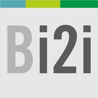 bridgei2i-company-logo