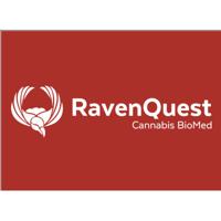 Ravenquest logo