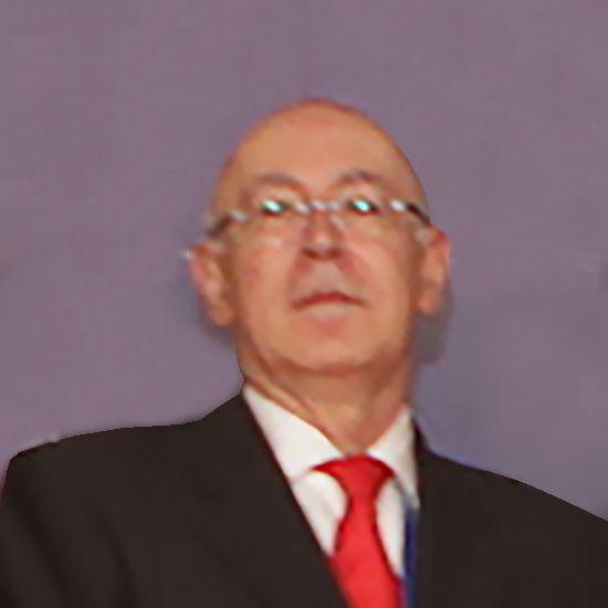 Jose del Olmo