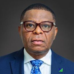 Profile photo of Nelson Nweke, Non-Executive Director at Fidelity Bank