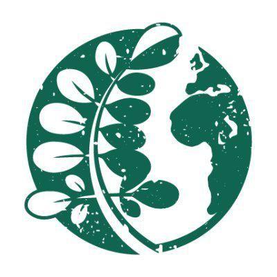 ECHO International logo