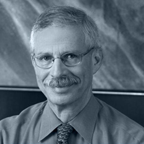 David S. Shapira