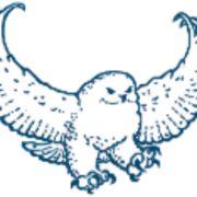 Ukpeagvik Iñupiat Corporation logo