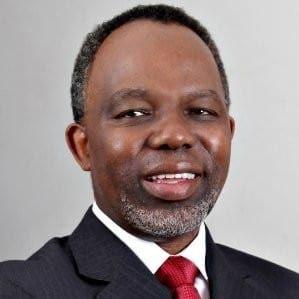 Delani Mthembu