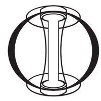 Tokamak Energy logo