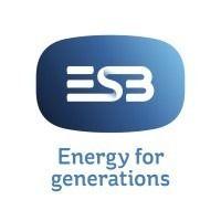 Electricity Supply Board logo
