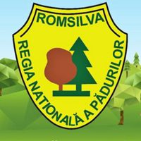 Romsilva logo