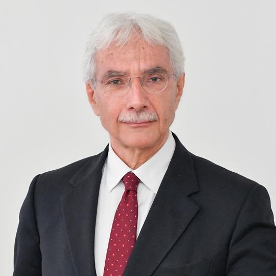Profile photo of Salvatore Rossi, Chairman at TIM