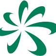 Sumitomo Dainippon Pharma  logo