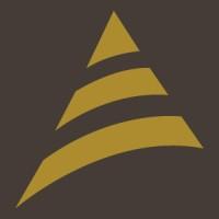BRACE Industrial Group logo
