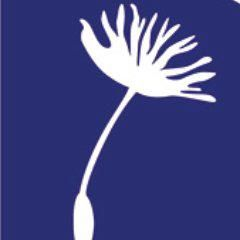 Specialisterne USA Logo