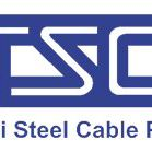 Thai Steel Cable PCL logo