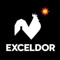 Exceldor logo
