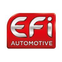 Electricfil Automotive S.A.S. logo