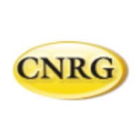 Central Network Retail Group logo