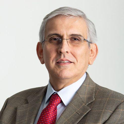 Vincenzo Greco Cv