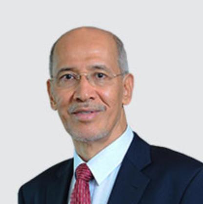 Tan Sri Dato' Seri Mohd Bakke Salleh