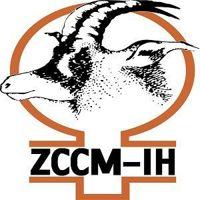 ZCCM Investments Holdings Plc logo