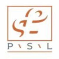 PSL Group logo