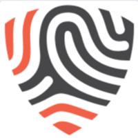 BigID logo
