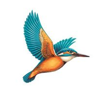 United Breweries Ltd logo