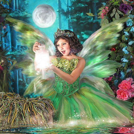 Enchanted Fairies logo