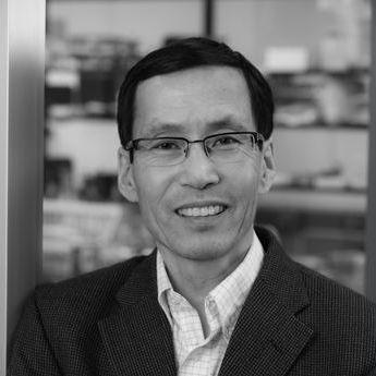Takashi Kei Kishimoto