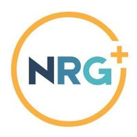 The Northridge Group logo