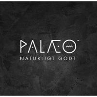 Palaeo logo