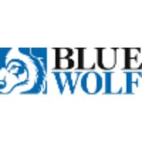 Blue Wolf Capital Partners logo