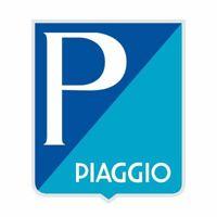 Piaggio & C SpA logo