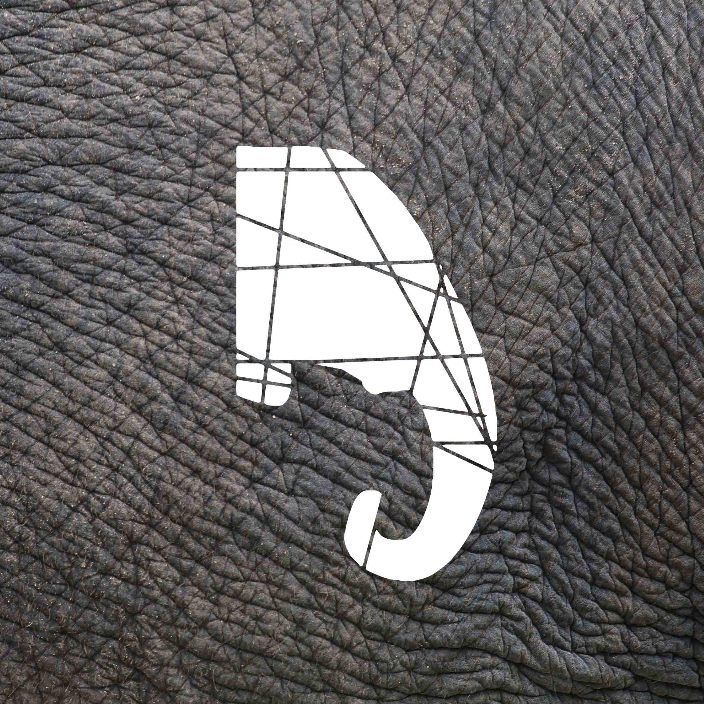 Elephant Skin logo
