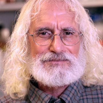 Phil Greenberg