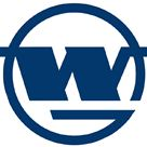 Wuhan Iron & Steel logo
