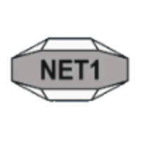 NET1 UEPS Technologies logo